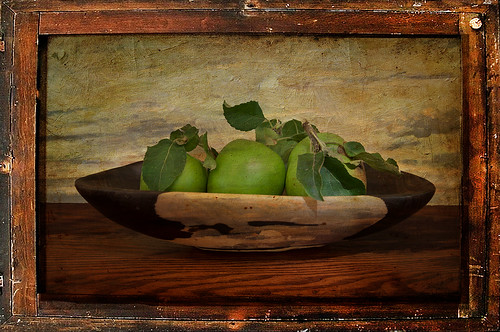 Apple Still Life | by ronphoto2009