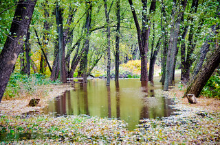 Milton State Park