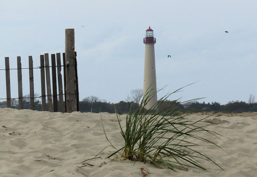 lighthouse capemay newjersey cloudy overcast canon canonsx710hs landscapeframing beach