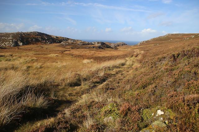 Moorland between Armadale and Kirtomy