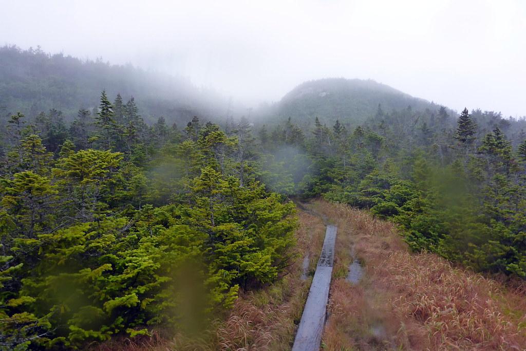 Narrow Boards through Bog