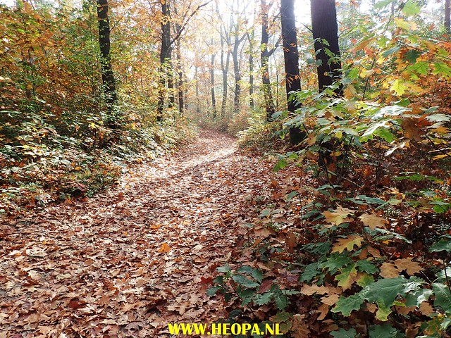 2017-10-18  Rhenen 25 Km (141)