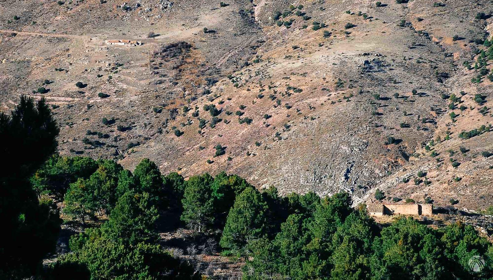 Cortijo de los Cazadores y cerro Quintana enfrente