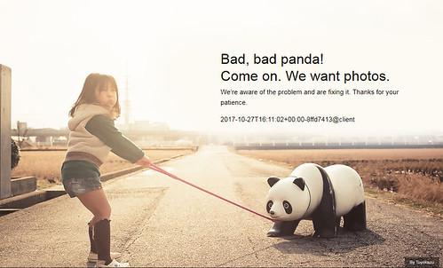 Bad Panda - Thank California