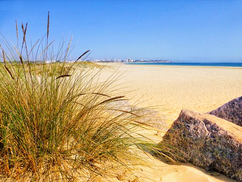 landscape sand grass sea coast coastal beach algarve