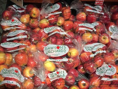 Comic Sans Gala Apples