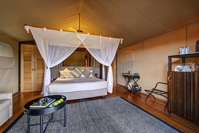 Next: Animal View Lodge
