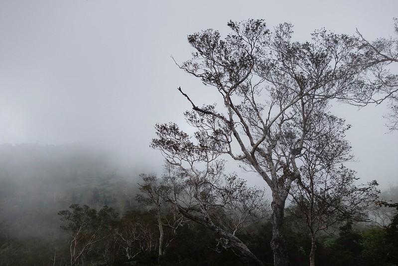 Mountain-climbing path HAKUSAN