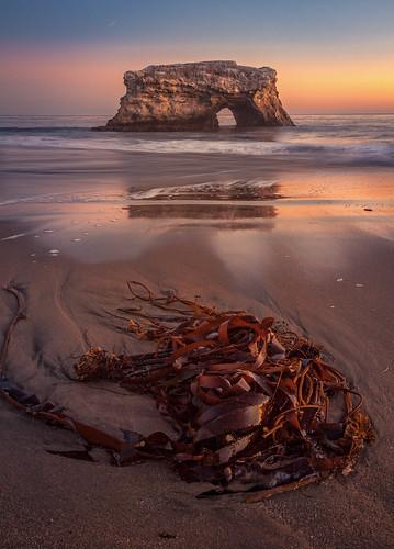 sunset seascape california color coast canon5dmkii coastline canon24105mmf4l landscapes longexposurephotography outdoors ocean ocaso outdoor oceano santacruz naturephotography naturalbridges