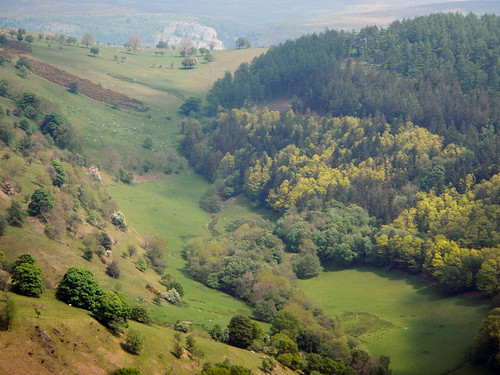 Wooded landscape on the drive to Llangollen in Wales