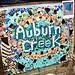 2015 - 06 SDCL CHW Auburn Creek Restoration Celebration