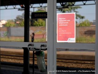 Ferrovie e dintorni   by The Strawberry Field