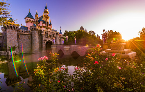 california morning travel light sleeping vacation castle beauty sunrise dawn golden early nikon angle disneyland magic disney hour anaheim walt ultrawide d810 disneyland60