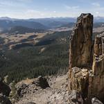 Petrified tree on Sky Rim Trail