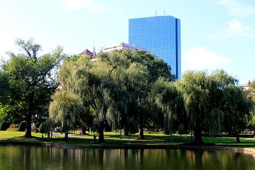 bostoncommon