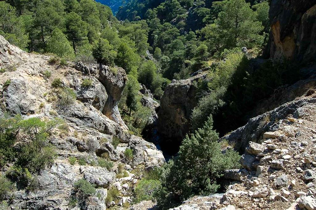 Curso del arroyo de Guazalamanco