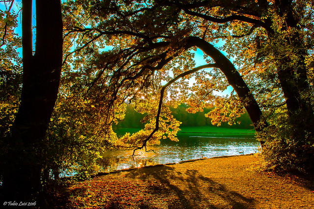 Schlosspark Nymphenburg Lake