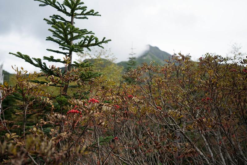 20170924-塩見岳_0165.jpg