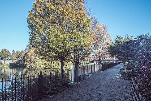 HIDDEN PUBLIC PARK - BLESSINGTON STREET BASIN [MY SECOND DAY USING THE SONY RX0]-133583
