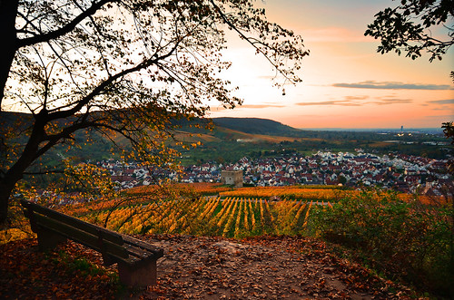 sunset sun sunlight fall autumn season color light landscape view nature outdoors hill vineyards bench october pattern town rural countryside stetten kernen remstal badenwürtemberg germany europe travel destination explore wanderlust relax 2017 sky clouds mood