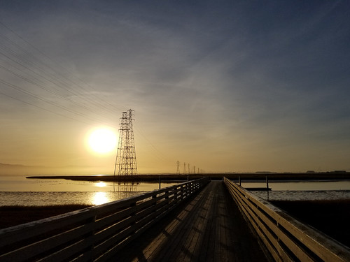 paloalto california pylons dock sunrise morning baylands pier