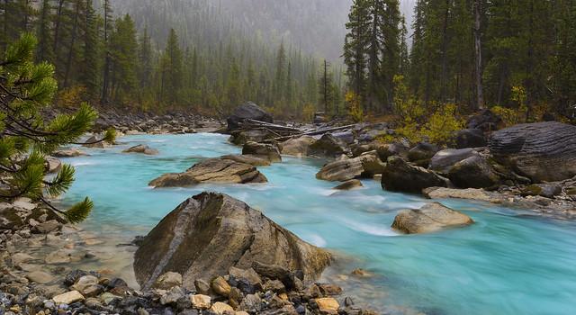 Yoho River after Rain (Yoho NP, BC, Canada)
