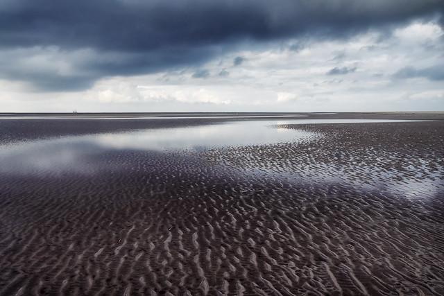 Tidal Flat Waves