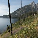 Jenny Lake Loop Trail