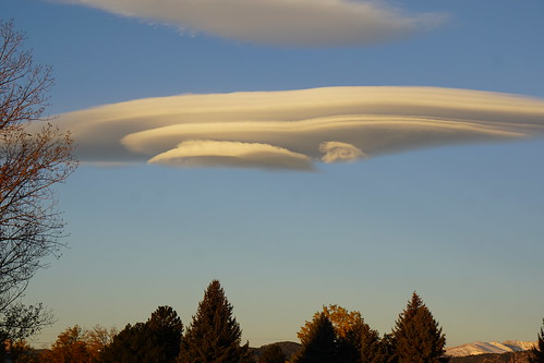 cloud clouds lenticular dawn morning atmospheric atmosphere treetops sky tree cielo nube lasnubes nubes striated stacked atmosphericphysics