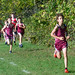 Modified XC vs Fulton