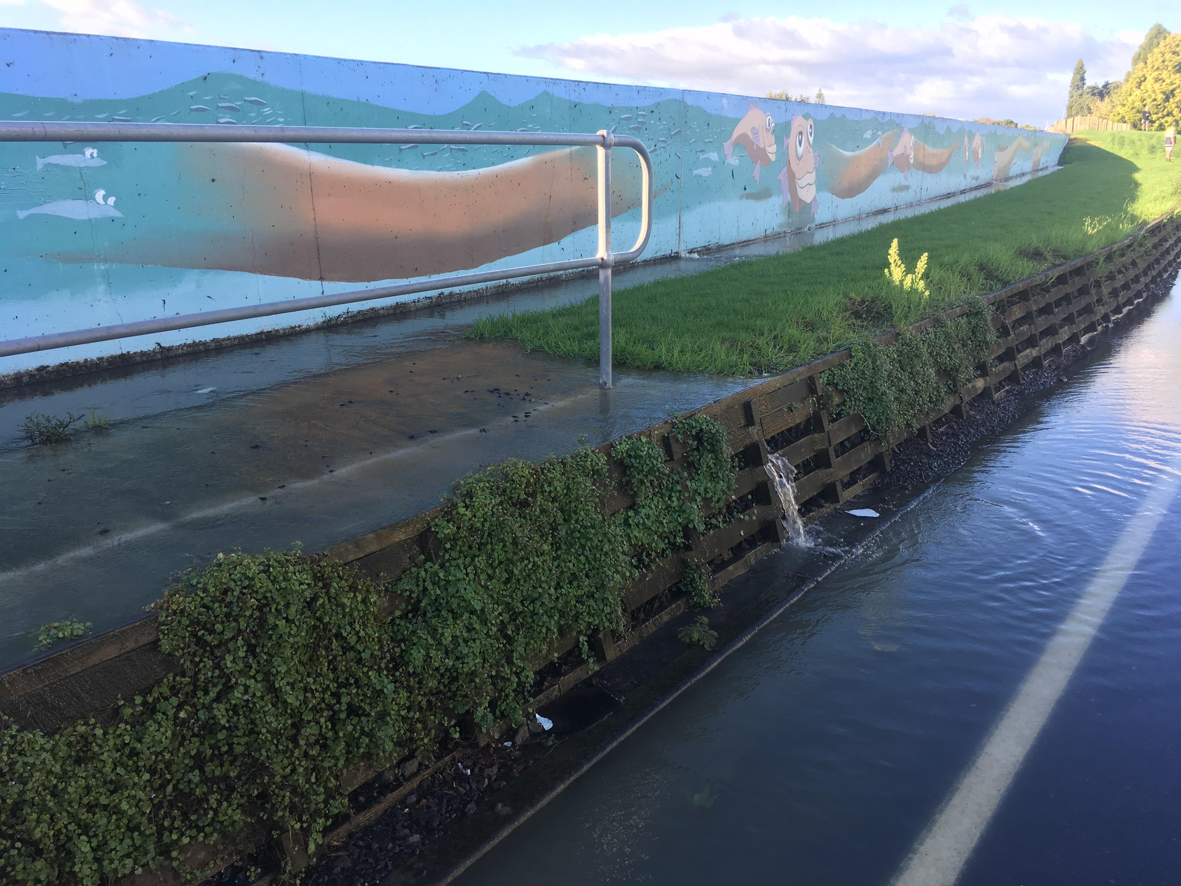 ニュージーランド 〒 プレンティー湾SCA Hygiene Australasia日の出日の入り時間