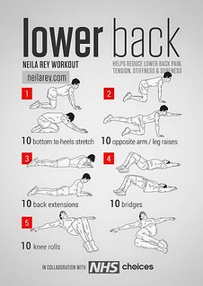 yoga for beginners  lower back workout helps reduce lower