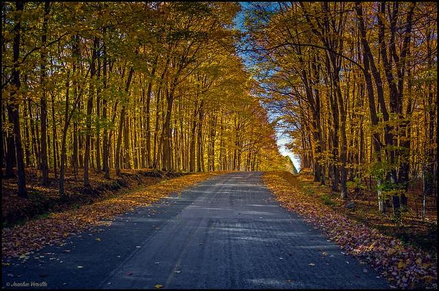 Chemin d'Automne / Autumn road