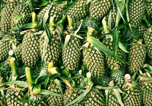 burmese maesot maesotmarket seasia tak takprovince thaiborder thailand asia asian bordertown fruit health market pineapple producemarket tropical tropics th