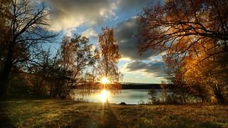 Low sunbeam | by Blackpeppereye