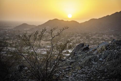 arid desert scrub phoenix arizona tacphotography tomclark d7100 tomclarknet
