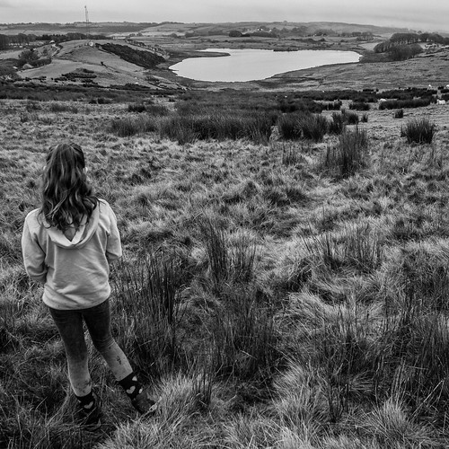 ceredigion lake llyneiddwen landscape people view vista hills wales blackandwhite square