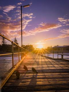 porties sunrise-3 | by shav.bird