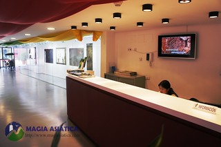 Centro Cultural Chino Madrid 3 Magiasiatica | by contacto.magiasiatica