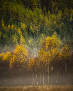 Colour Balance, Thirlmere | by Mark Littlejohn