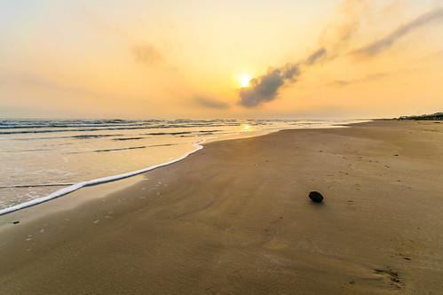 mexican mexico nikond5300 sigma1020 tuxpan veracruz beach coastal coconut ilobsterit sand sunrise mx