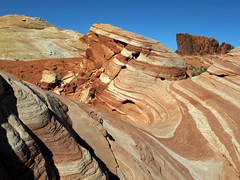 Valley of Fire _341