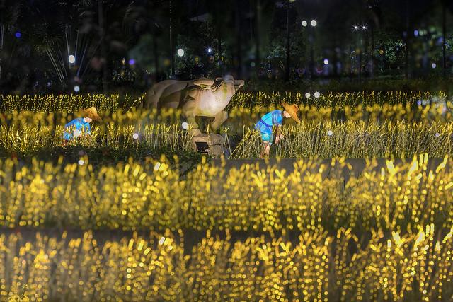 MID-AUTUMN @ GARDENS BY THE BAY 滨海花园庆中秋
