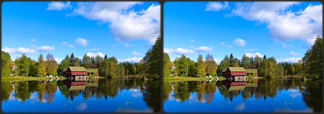 ... autumn walk ...