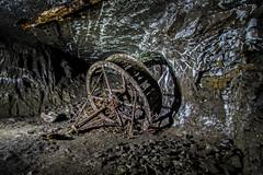 Rampgill Horse Gin Wheel