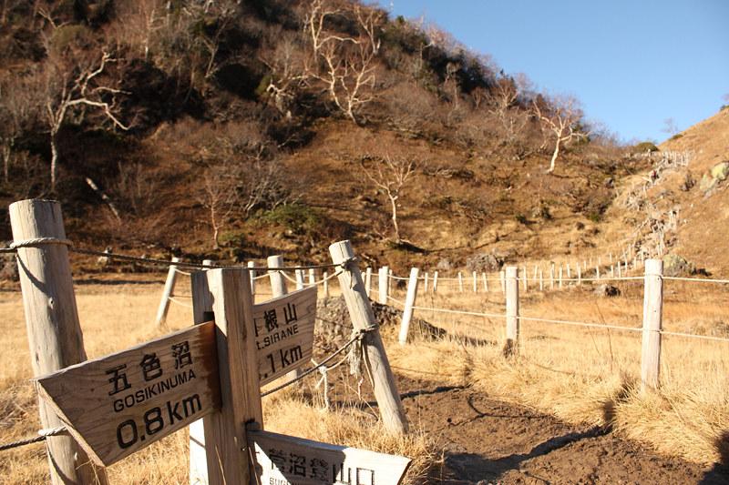 20111029_日光白根山_0027