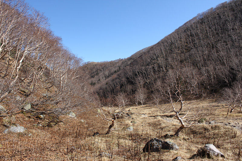 20111029_日光白根山_0062