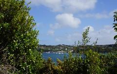 Pulau Stewart