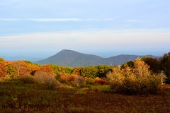 Old Rag View Overlook, Shenandoah National Park