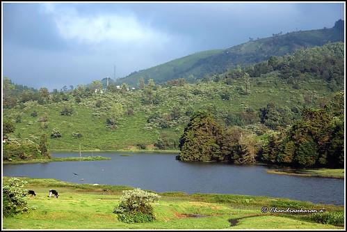 ooty nilgiris tamilnadu india nature hills canoneos6dmarkii tamronef28300mm